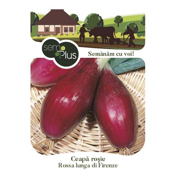Seminte de ceapa rosie Rossa lunga de Firenze, 1,5 grame, SemPlus